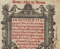 "Ibn Rushd ""Averroes"" and Medicine"